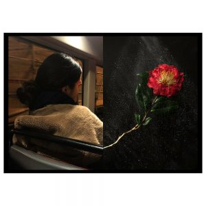A juxtaposition of a street portrait and still life of a found flower pressed between perspex with water spray