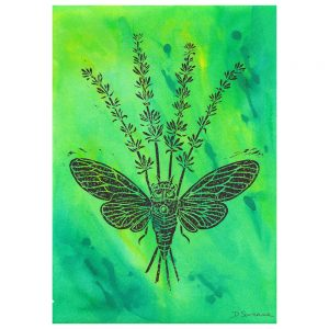 Black lino print on a an abstract acrylic ink background of varying green and yellow shades. The lino print is of an open winged cicada, overlaying four sprigs of lavender where they cross.