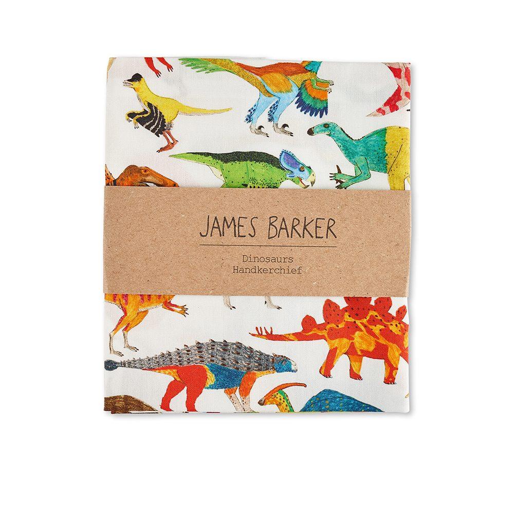 Dinosaur designer pocket square by James Barker
