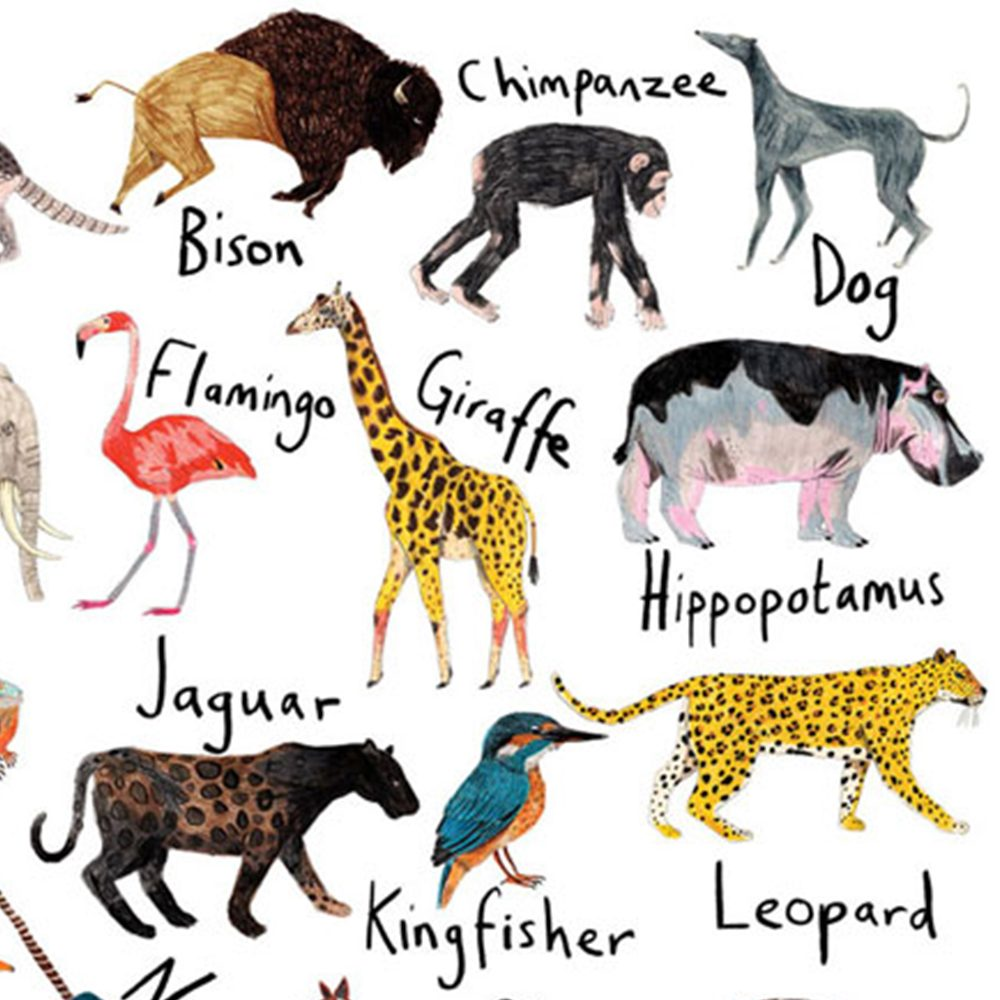 Home wall art - animal alphabet