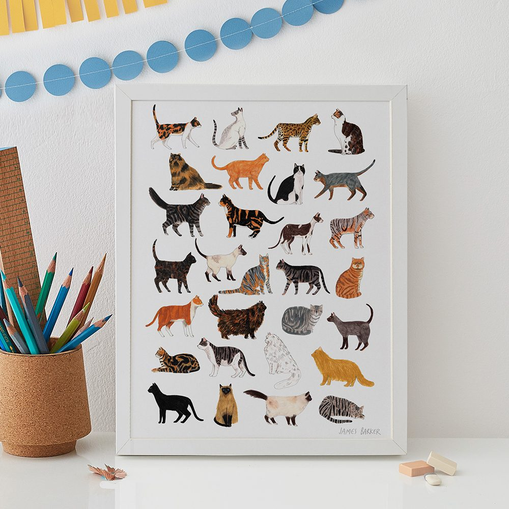 Home wall art - cats illustrated print by James Barker