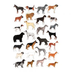 Home wall art - dogs illustrated print