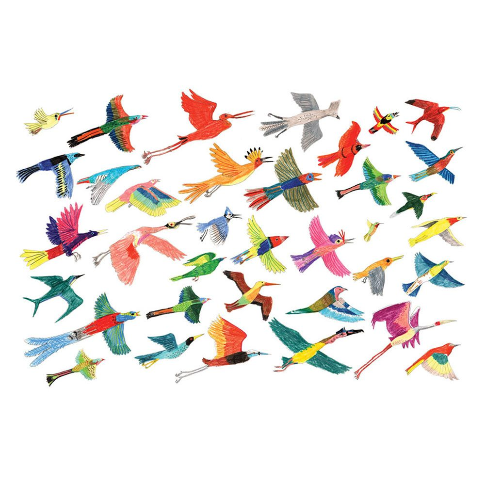 Home wall art - exotic birds illustrated print