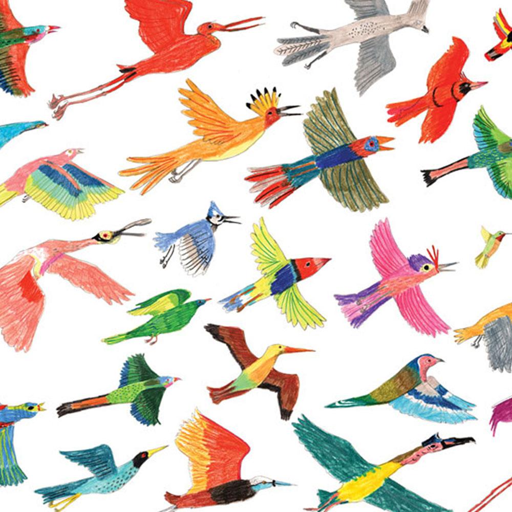 1000 Ideas About Bird Wall Art On Pinterest: Exotic Birds Illustrated Print