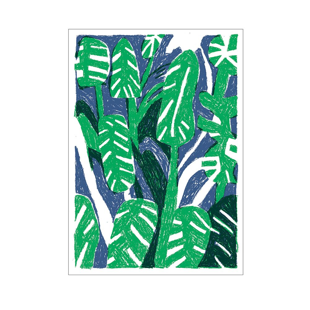 Limited edition art prints - Plants 2 by John Molesworth